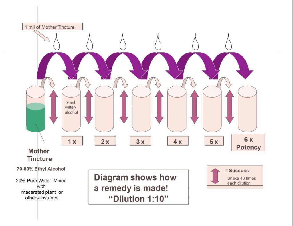 Diagram_Making_Homeopathy_pdf